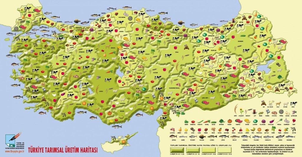 türkiye tarimsal üretim haritası