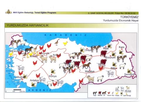 türkiye hayvancılık haritası