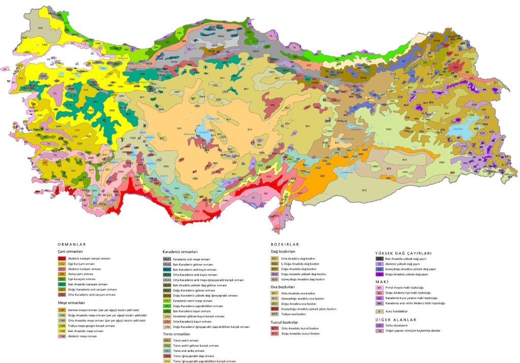 turkiye bitki haritasi